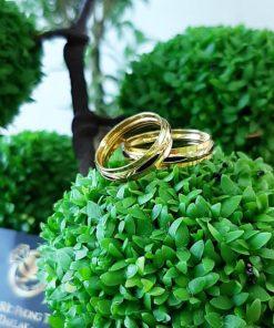Nhẫn lông voi 2 vành vàng phong thủy RIOGEMs
