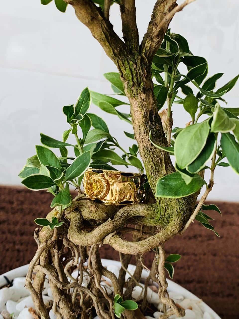 Nhẫn phong thủy tuổi Sửu - Nhẫn 2 Trâu ngậm ngọc Cz vàng Riogems