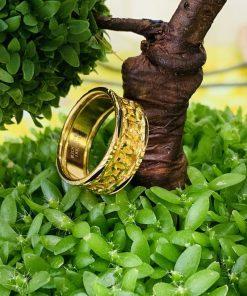 nhẫn kim tiền đúc lòng nẹp 2 viền lông voi RioGems