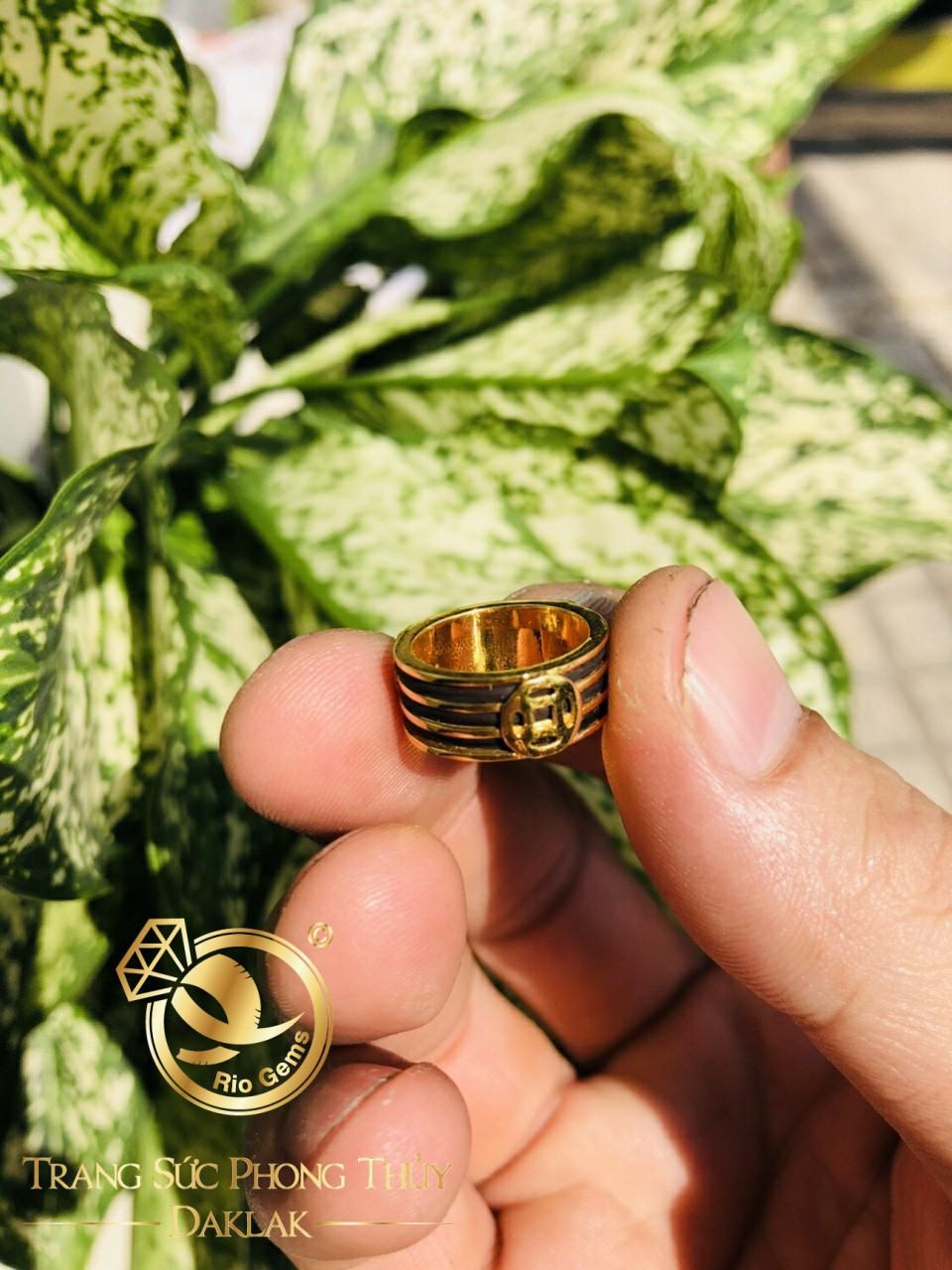 Nhẫn lông voi vàng tài lộc đồng tiền uy tín