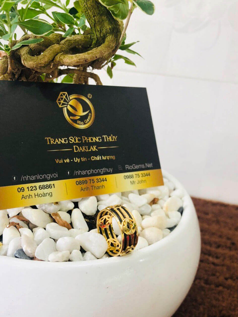 Nhẫn Tài Lộc 5 đồng tiền 3 sợi lông voi thời trang