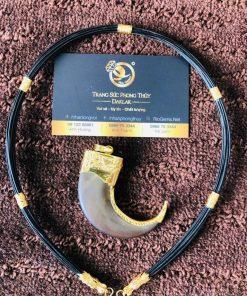 Dây chuyền lông voi (cỡ vừa) đẹp giá trị