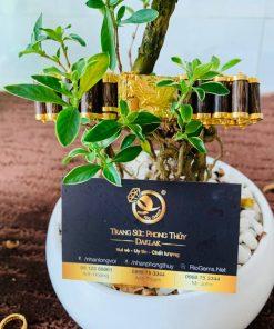 Lắc tay mắc xích trầm hương được gia công bởi RIOGEMs