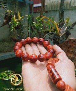 Vong-tay-Huyet-Long-Buon-Ho-Dak-Lak-tron-12li