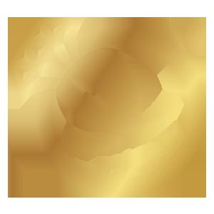 RioGems